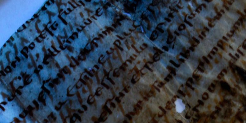 Successo per la Summer School in Medieval Manuscripts